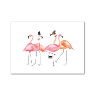 Flamingo feestje